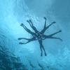 宮古島の絶景ポイント 八重干瀬で泳いでみた