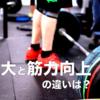 #53 筋力トレーニングにおける筋の肥大と最大筋力向上の違いとは?
