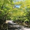 三倉岳と白滝山で熱中症寸前の歩荷トレ
