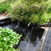 飲用水源施設