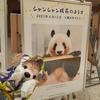 #シャンシャン4才#上野動物園#TokyoZooNet
