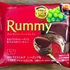 これが本当のリニューアル!2020年のラミーチョコアイスを食べました!幸せです!
