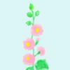 梅雨明けを知らせる花