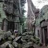 正直アンコールワットしかない!?カンボジアのおすすめスポットを紹介!