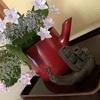 雨の日もちょっと楽しい、、、紫陽花。