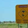 オーストラリアでオススメ! 観光 行って良かったエリア  ランキング