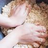 初めてでも出来る!『手作り味噌』の作り方と注意点を丁寧に解説します