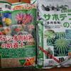 【多肉植物】市販されているサボテン・多肉植物専用土のおススメはこれ!!