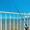 【宇土マリーナ(熊本)】初心者だけどGWは釣りをする