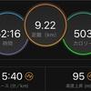 豊平川市民マラソンレポ2