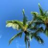 Travel:ハワイに行くぞーー!!おーー!! 現地編その1