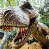 大高緑地公園で恐竜に遭遇「ディノアドベンチャー名古屋」に行ってきました