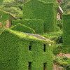 神秘的すぎる廃墟!自然に飲み込まれる中国の漁村が凄い