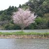 2017年4月22日 亀山湖