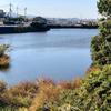 蓮池(和歌山県和歌山)