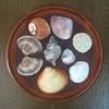 鹿島灘で貝殻拾いとゴミ拾い。痛恨のスマホ忘れの巻
