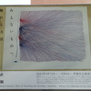 【ART】R3.3/13~5/9_「植松奎二 みえないものへ、触れる方法――直観」芦屋市立美術博物館