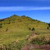 【四阿山】牧場でくつろぐ牛とレンゲツツジを愛でる、北アルプスを望む根子岳周回の山旅