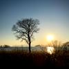 日没30分前の琵琶湖岸と「お客様の声」
