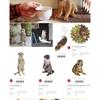 ●再入荷のご案内:PET BANK (/・ω・)/☆☆☆