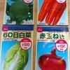秋撒き準備 9月の野菜