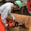 大径木伐木等特別教育②