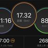 ジョギング17.32km・祝日は昼間にLSD120分の巻