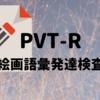 【参考として】PVT-R「絵画語彙発達検査」受けてきました