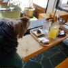 鹿教湯温泉・足湯とカフェが一緒に楽しめる【おきな菓子鋪・翁珈琲】