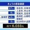 51人が新型コロナウイルスに感染 のべ6033