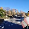 フウナ in リアル 2020・12月 緊急調査「Christmas in central Tokyo 2020」