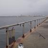 ≪実釣編≫西○浜で釣りをする