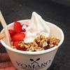 ヴュルツブルクの美味しいアイスクリーム屋さん(フローズンヨーグルト)