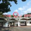 パンダとコアラに同時に会える動物園「神戸市立王子動物園」へ行ってきました!王子動物園の感想まとめ!