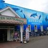 1泊2日、子連れ旅行 in福井 その2 ~越前松島水族館へ行きました~