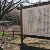 うわばみ池の桜