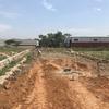 南米パラグアイに賃貸アパートを建てる8【ストライキ発生!?】