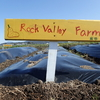 [じぶんポテト]成長記【6_Rock Valley Farm】