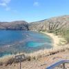 ハワイへ4泊6日で初めての海外旅行したら、スーツケースが2回無くなった話