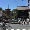 【春の散策2017】新緑の高幡不動から多摩動物公園に行ってきました(その1山道編)