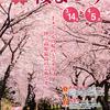 桜を愛でつつ、クラフトも