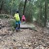 ウチの5歳が登山を楽しいと言った日