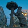 【イッタ気動画】スペインの中心に集まる多様な生物達…!?