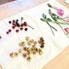 桜の実のブレスレットと落ち花のハーバリウムもどき