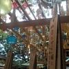 夏限定!川越氷川神社の縁結び風鈴の時期、混雑状況、アクセスは?