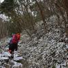 大雪の国見山遊山 新雪の道