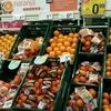 旬を迎えたオレンジの産地、バレンシアのオレンジ事情