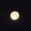 [21/05/28]ひのえ ね 月に照らされて04h過ぎムクリ呑み直し