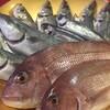 本日の漁港直送の魚たち!(^O^)/