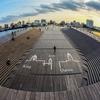 横浜市みなとみらい駅周辺その6~クジラの背中って木製なんです~